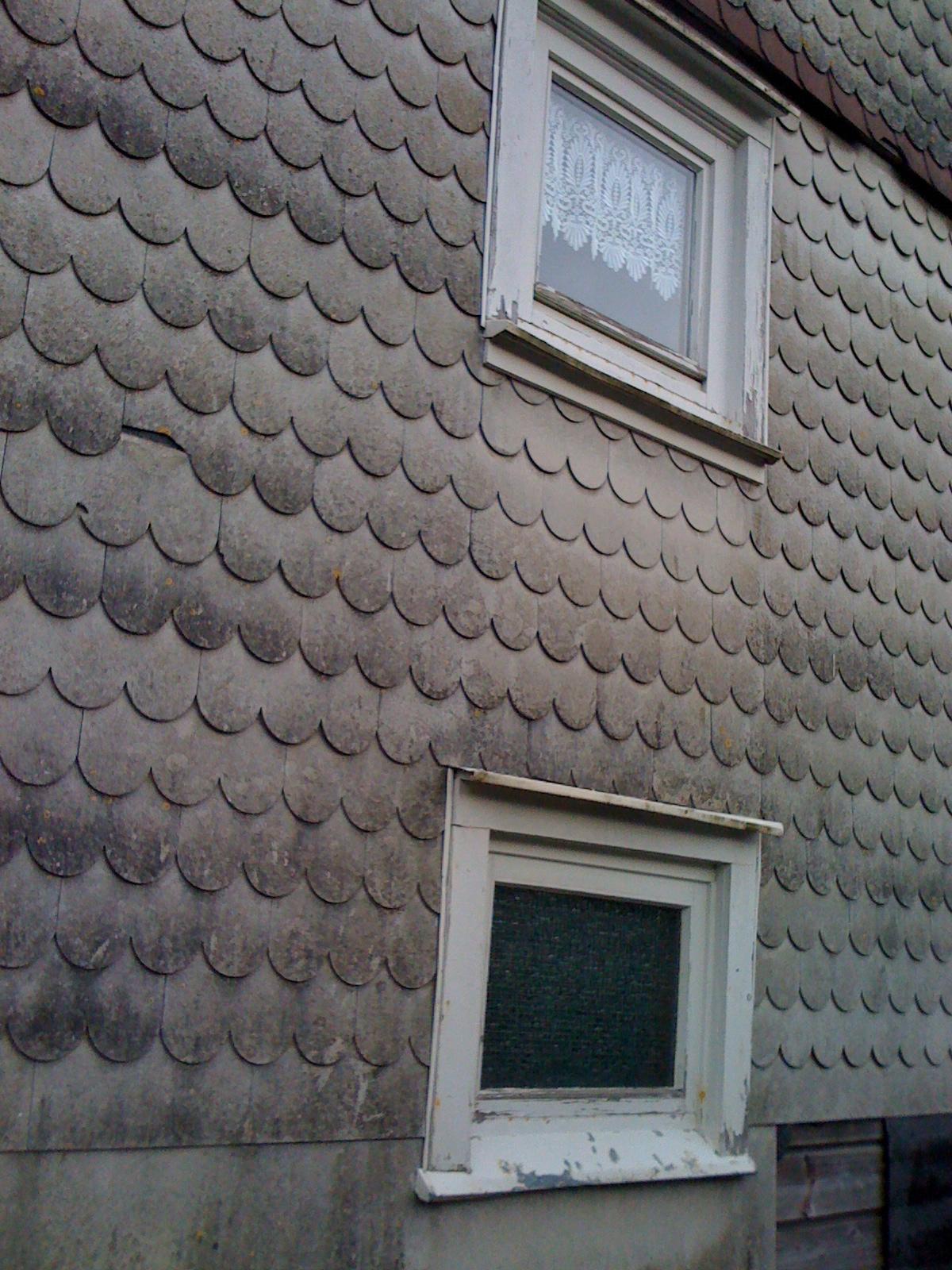 asbest in wohngeb uden wir wollen aufkl rung silvia sch n. Black Bedroom Furniture Sets. Home Design Ideas
